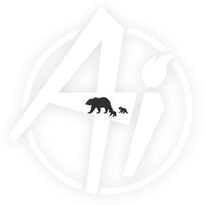 Bear with Cubs - D3243