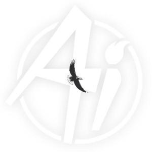 Soaring Eagle - F3262