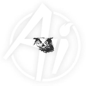 Owl - H3252