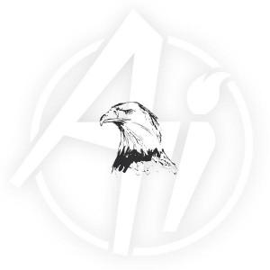 Eagle Head - I3232