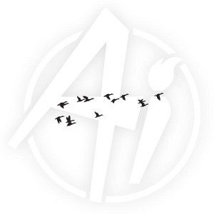 Flying Ducks - I3256