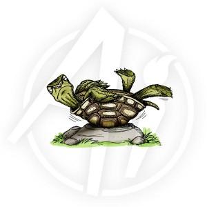 Turtle - L1603