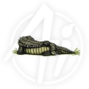Croc - M1184