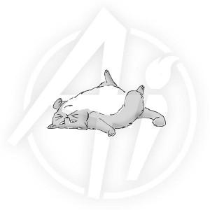 Feline Flop - M4186