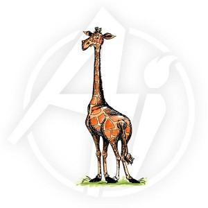 Jumbo Giraffe - P1180