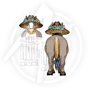 Pony Front & Back - U1517