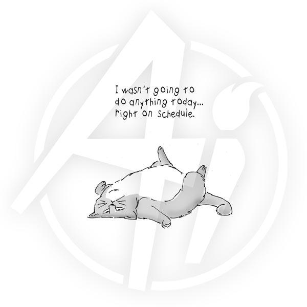 4193 - Feline Set