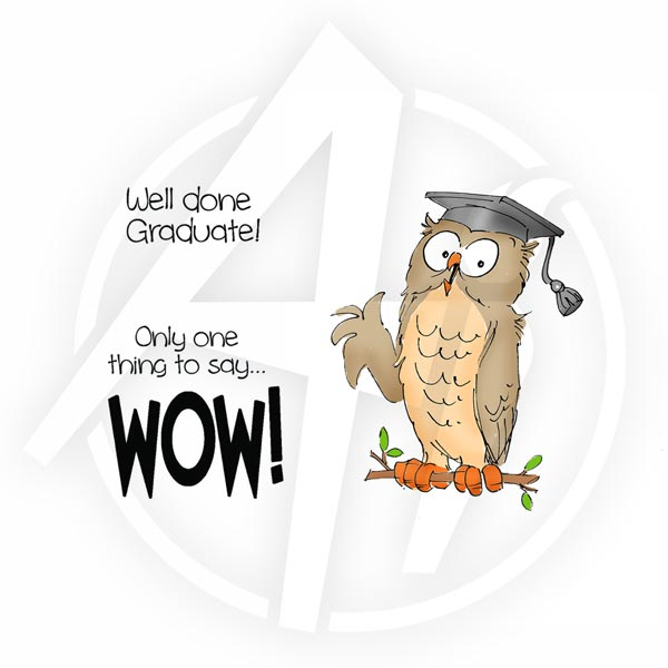4291 - Wow Graduate Set